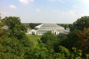 News: Kew Temperate House re-opens